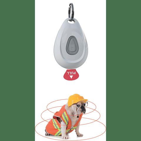 ZeroBugs™ PET Anti pulgas y garrapatas