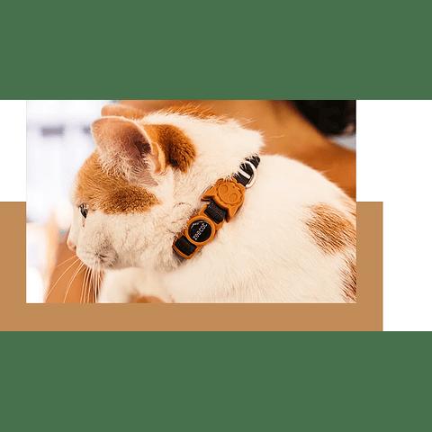 ZEE.CAT PATAGONIA CAT COLLAR