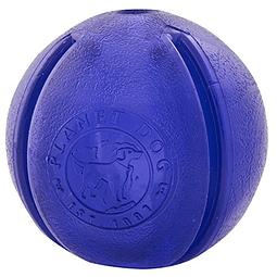 Planet Dog Orbee-Tuff GuRu Purpura