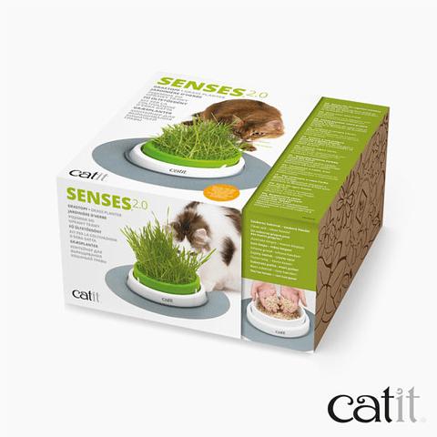 Cat It Senses 2.0 Germinador De Pasto