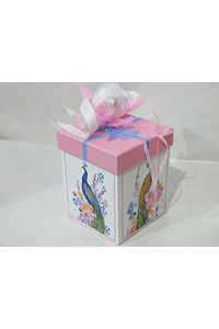 P20314 - Caixa cubo media