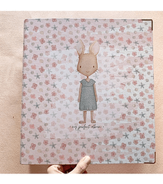 Carpeta 9 x 12  Carrotcake