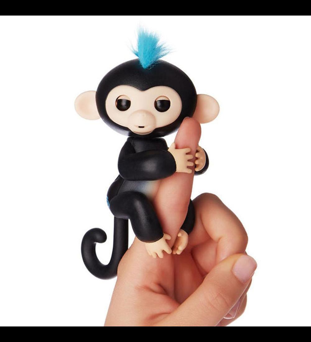 Macaco Interativo - Finn