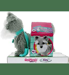 AniMagic - Cão Tilly