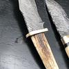 Cuchillo de colección outdoor origen Siria (cuerno alce)