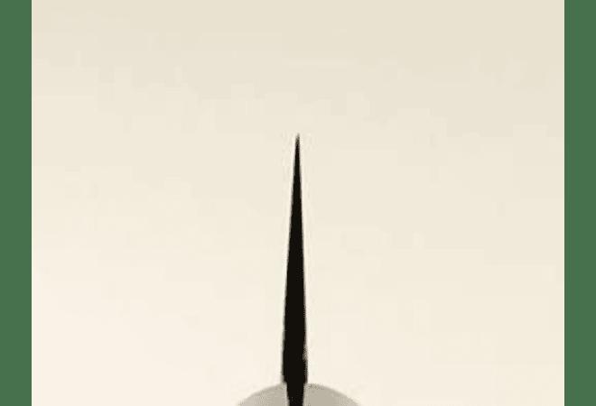 TOJIRO DP  Hammered Finish w/wood handle, CHEF, 240mm (F-1116)
