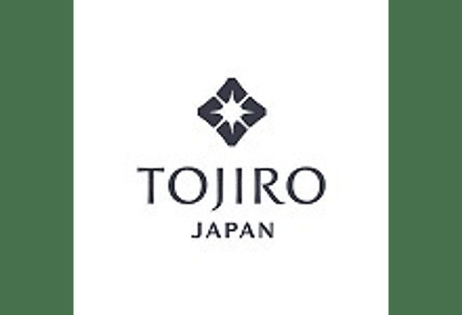 TOJIRO DP series by VG10, SANTOKU, 210 mm (F-500)