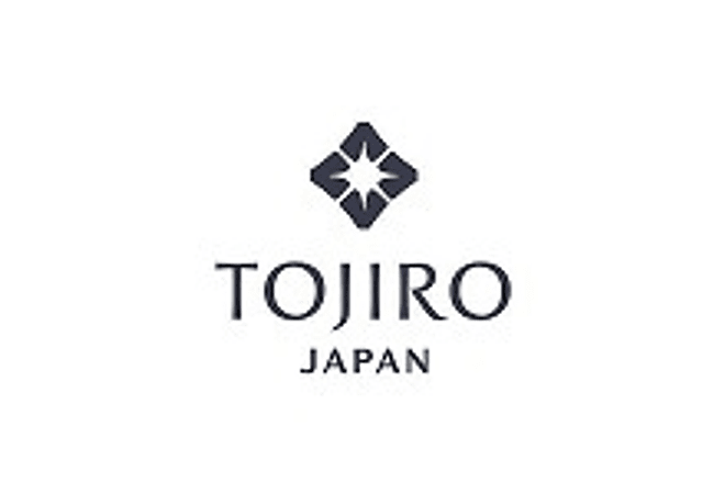 TOJIRO DP series by VG10, SANTOKU, 210 mm (F-500)