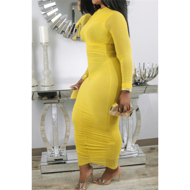 Mesh C-thru Pleated Stretch Dress
