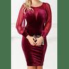 Mesh & Velour Spliced Elegant Dress