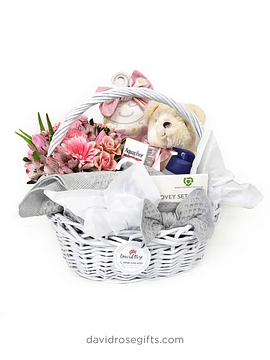 Welcome Little One - Basket