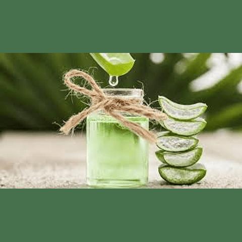 Esencia Aloe