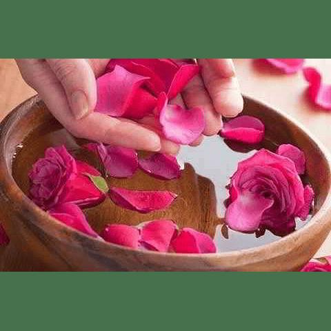 extracto pètalos de rosa