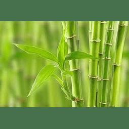 Exfoliante de bambú 30 grs