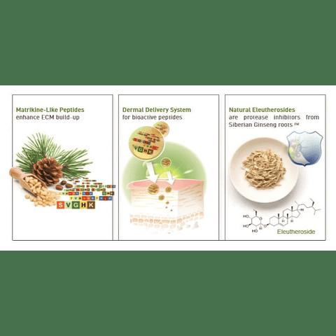 Péptidos 7 ( Péptidos vegetales)