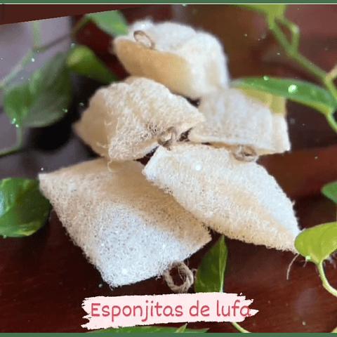 Lufa esponjitas