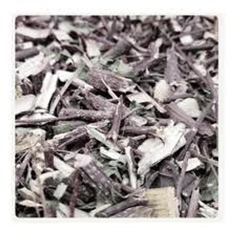 Palo negro, la hierba curativa del cáncer...y otras enfermedades