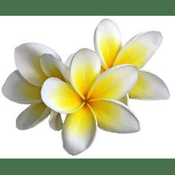 Aceite de Monoi Tahiti