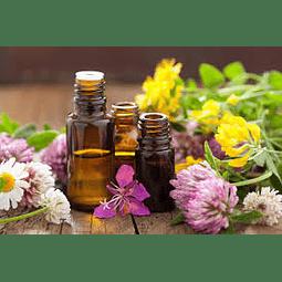 A. Esencial 31 Oleos