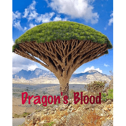 Dragon´s Blood