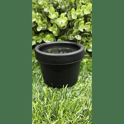 Envase Pet negro 50 grs
