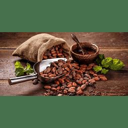Extracto cacao