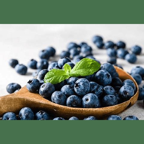 Esencia de Blueberry-Arándanos
