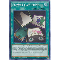 Flower Gathering - DLCS-EN136 - Common 1st Edition