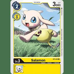 Salamon - ST3-02
