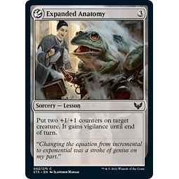 Expanded Anatomy 002/275 - Foil