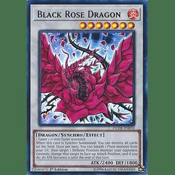 Black Rose Dragon - DUDE-EN010 - Ultra Rare