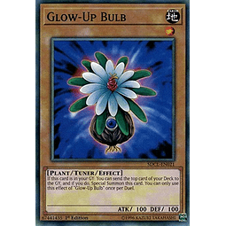 Glow-Up Bulb - SDCL-EN021 - Common 1st Edition
