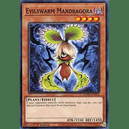 Evilswarm Mandragora - EGO1-EN012 - Common 1st Edition