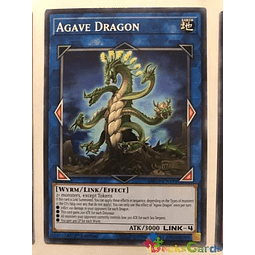 Agave Dragon - mp19-en191 - Common 1st Edition