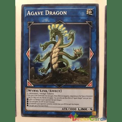 Agave Dragon -mp19-en191- Common 1st Edition