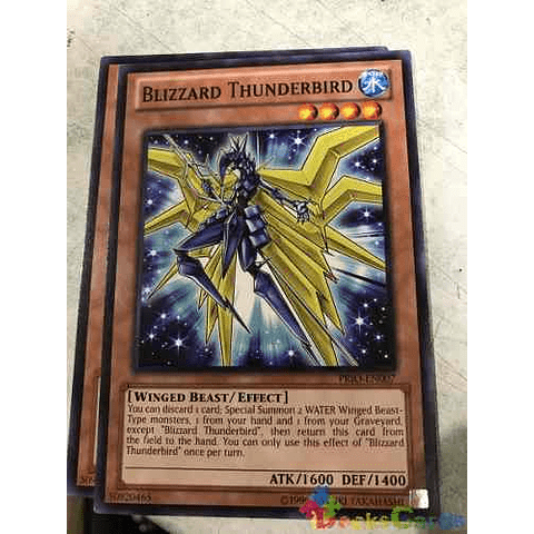 Blizzard Thunderbird -prio-en007- Common Unlimited