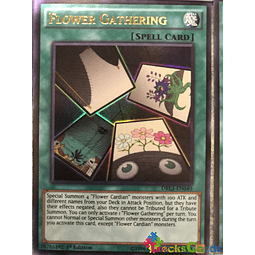 Flower Gathering - DRL3-EN040 - Ultra Rare 1st Edition