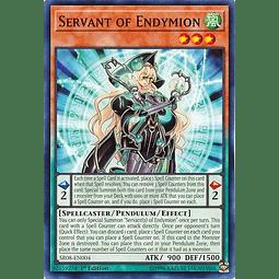 Servant of Endymion - SR08-EN004 - Common 1st Edition
