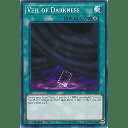 Veil of Darkness - SR06-EN029 - Common 1st Edition
