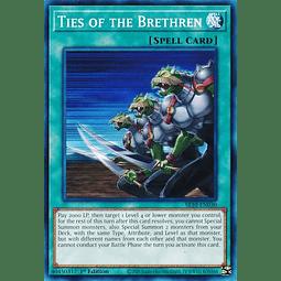 Ties of the Brethren - SR10-EN030 - Common 1st Edition