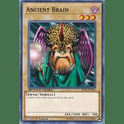 Ancient Brain - SBTK-EN004 - Common 1st Edition