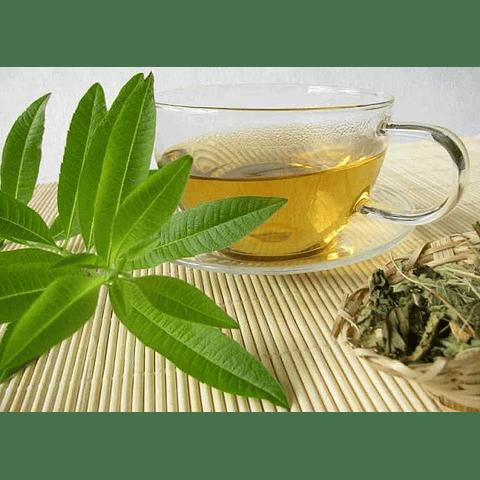 Oil Essence Candle Té Verde Verbena