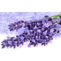 Oil Essence Candle Lavanda