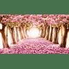 Mikado Primavera