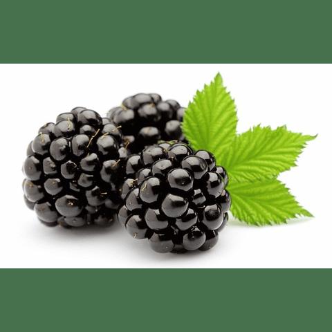 Perfume Telas Mulberry Uva