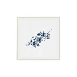 Flor de Nobilis