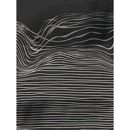 Negro Zebra