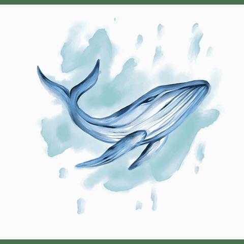 Cortina Baño Whale