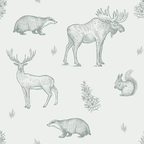 Animales del Bosque | Ciervo