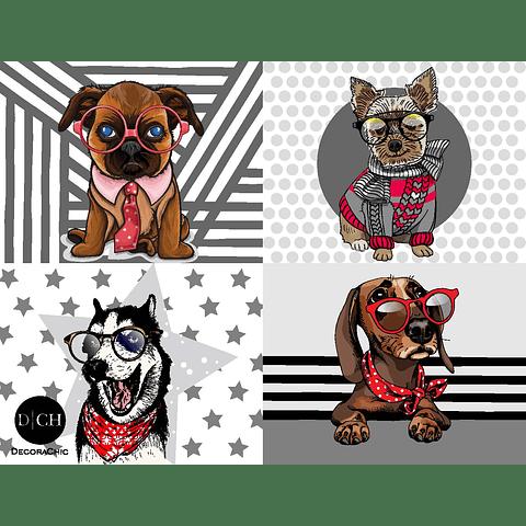 Individual Perros a la moda